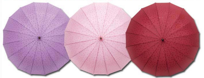 樱花伞 (3).png