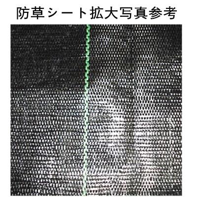 製品図面-防草布细节图.JPG
