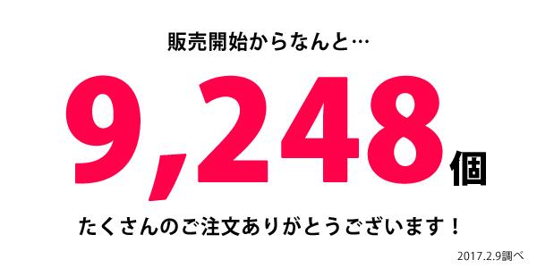 naka-1068_ruikei3.jpg